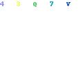 Sri-Ganesh puja
